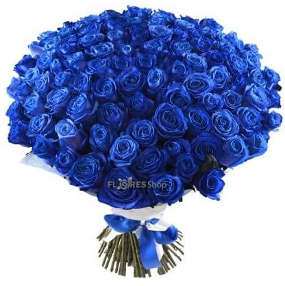 1723 Amo Rosa Azul