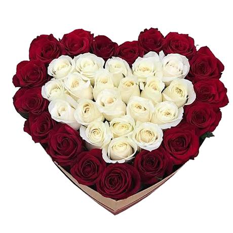 2011 Você é meu coração