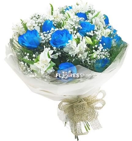 2121 Belas Rosas Azuis