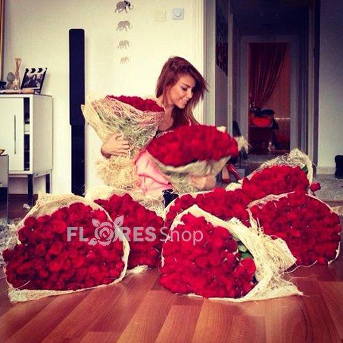 392 Show!!! Muitas Rosas Vermelhas!