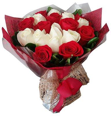 462 Belas Rosas
