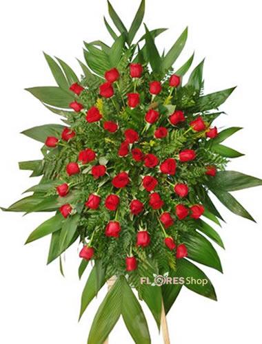 560  Coroa de Rosas