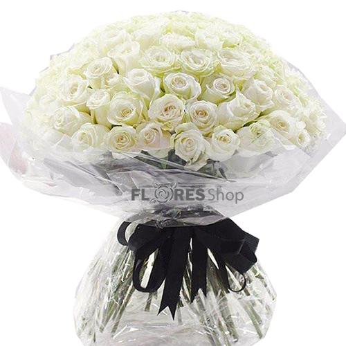 604 Show...100 Rosas Brancas